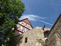 Burg-Bodenstein_P6300104-(160)w