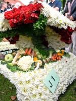 Jugendwagen2011_9189277