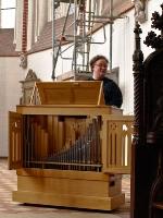organist_9188821