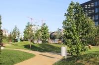 grasbrookpark_mfw13__025382
