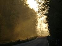 Insel Rügen_die Natur erwacht_AA210952
