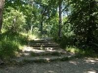 baerenpark_worbis_P6275161