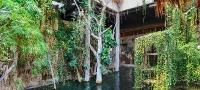 tropen-aquarium-hagenbeck_mfw13__015092_st