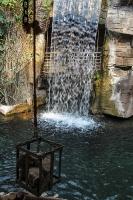 tropen-aquarium-hagenbeck_mfw13__015101