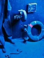 tropen-aquarium-hagenbeck_mfw13__015193