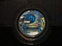 tropen-aquarium-hagenbeck_mfw13__015195