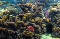 tropen-aquarium-hagenbeck_mfw13__015277