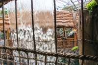 tropen-aquarium-hagenbeck_mfw13__015562