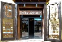tropen-aquarium-hagenbeck_mfw13__015569