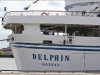 delphin_IMG_4421-